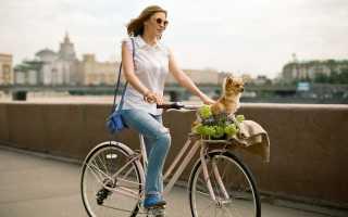 Чем отличается мужской и женский велосипед. Как отличить женский велосипед от мужского: особенности, размеры и рекомендации. Можно выделить три основные ценовые категории
