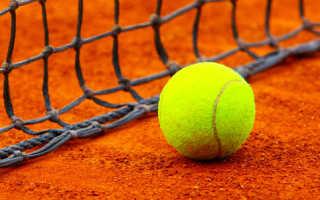 Что рассказать людям о пользе большого тенниса. Большой теннис — большая польза. Травмы и заболевания в большом теннисе