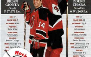 Самый маленький хоккеист в мире. Кто из хоккеистов самый высокий. – И на уровне сборной это имело место