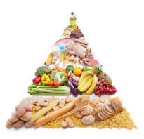 Питание перед соревнованиями и во время соревнований. Особенности питания спортсменов во время и после соревнований. Правила поведения во время субботника