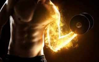 Откуда берется молочная кислота в организме. Молочная кислота в мышцах: как вывести во время тренировки. Приём жидкости во время тренировок и после них