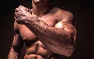 Как укрепить связки после травмы. Чем отличаются связки от сухожилий