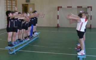 Упражнения для разминки на уроке физкультуры