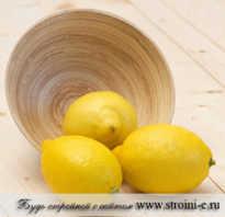Сжигание жира с помощью лимона. Как лимон сжигает жиры