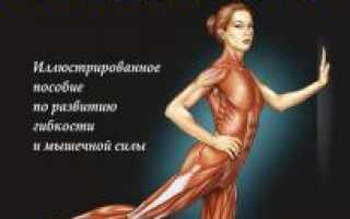 Книга: Арнольд Нельсон, Юко Кокконен «Анатомия упражнений на растяжку. Анатомия растяжки: упражнения для всего тела в картинках