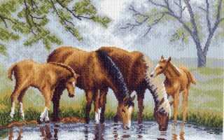 Май литл пони схема вышивки крестом. Вышивка крестом лошади: схемы и наборы, бесплатные, пони бегущие по воде, Риолис для девушек