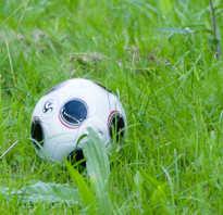 Футбольный мяч во сне. К чему приснился мяч? И что вы делали во сне