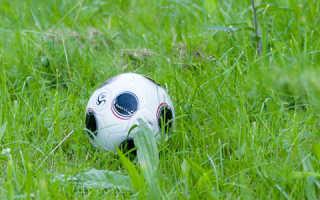Сон муж играет с зеленым мячом. Сонник Мяч, к чему снится Мяч? Каким был этот мяч