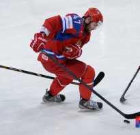 Хоккейный период сколько минут. Размер ворот в хоккее с шайбой. История возникновения и развития хоккея с шайбой