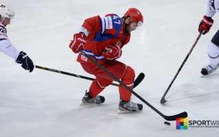 Хоккей сколько человек в команде на льду. Хоккей. Правила игры в хоккей с шайбой на льду. Взятие ворот в хоккее