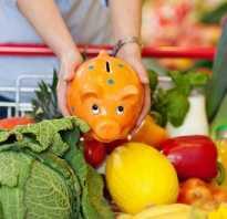 Похудеть нет денег на продукты. Как правильно питаться, если нет денег