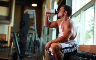 Что лучше пить утром протеин или гейнер. Гейнер или протеин что лучше