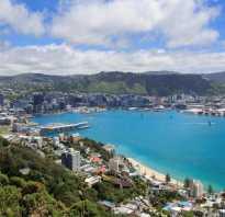 Население Новой Зеландии: плотность, численность и состав. Уровень жизни в Новой Зеландии