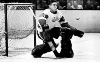 Хоккейный вратарь игравший без маски. Хоккеист Терри Савчук: биография, спортивные достижения, причина смерти