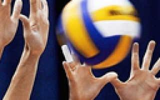 Список самых привлекательных волейболисток. Самые высокие волейболисты мира