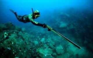 Подводная рыбалка с чего начать. Подводная охота. Требования к снаряжению