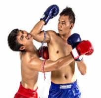 Что выбрать: бокс или тайский бокс? Отличия, правила, плюсы и минусы. Тайский бокс: основные принципы тренировок от профессионала