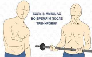 Почему горят мышцы после тренировки? Жжение в мышцах на тренировке. Это не опасно