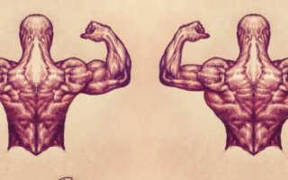 Можно ли заниматься спортом каждый день дома. Сочетание методик роста мышц. Что такое оптимальная частота тренировок