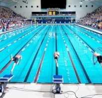 Основные стили плавания виды специфика техника. Кратко о видах плавания: какой лучше выбрать