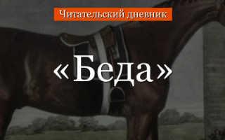 Читать м зощенко беда краткое содержание. Михаил ЗощенкоБеда (сборник)