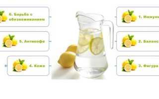 Минералка с лимоном для похудения. Как готовить и пить воду с лимоном, чтобы похудеть