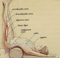Почему полезно держать ноги поднятыми вверх по двадцать минут ежедневно. Недуг, сшибающий с ног