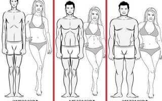 Эктоморф, мезоморф, эндоморф: как определить свой тип