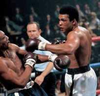 Стиль панчер в боксе. Кто такой панчер. Как побеждать агрессивных контр-панчеров