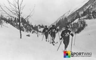 Стрельба на лыжах как называется. Классификация и краткая характеристика видов лыжного спорта. Некубковые биатлонные соревнования
