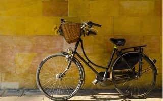 Пословицы про велосипед. Статусы про велосипед