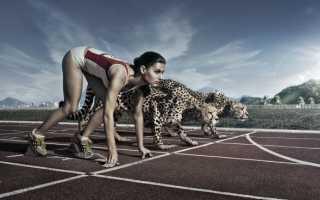 Можно ли похудеть в тренажёрном зале? Эффективные методы похудения в тренажерном зале — советы экспертов