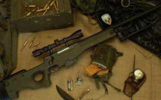 Название awp. CS:GO Оружие. Винтовка: Снайперская винтовка AWP
