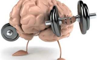 Мышечная память: что это и как её использовать. Развиваем мышечную память