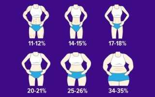 Процентное соотношение жира и мышц. Норма мышечной массы человека