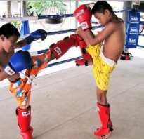 Тайский бокс для начинающих в домашних условиях. Как проходит тренировка по тайскому боксу