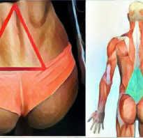 Упражнения по пилатесу. Занятия с Ингой Яхней. эффективных упражнений из пилатеса в гифках