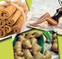 Какао с корицей и имбирем. Рецепт с пошаговым фото. Самые действующие способы применения имбиря для похудения — лучшие рецепты