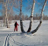 Почему полезно кататься на лыжах?! Как, когда и в чем кататься на лыжах