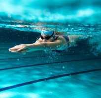 Можно ли поехать на море или посещать бассейн после родов. Общепринятые правила посещения бассейна. Что есть до и после вечерних тренировок в бассейне