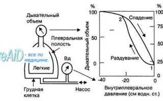 Растяжимость легких (легочной ткани). Механизм лёгочной вентиляции. Лёгочный резистанс и комплаенс. Эластическая тяга лёгких, две её составляющие. Лёгочные объёмы и ёмкости, основные параметры лёгочной вентиляции