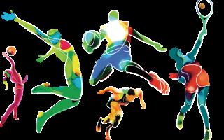 Чем отличаются спортсмены любители от профессионалов. Цели профессионального спорта. Чем профессиональный спорт отличается от любительского