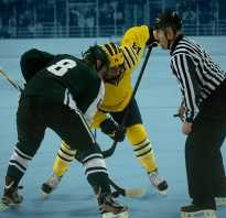 Сколько игроков в хоккейной команде? Хоккей. Правила игры в хоккей с шайбой на льду
