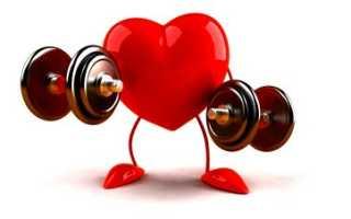 Сколько весят мышцы человека. Норма мышечной массы человека. Кому не следует заниматься обычным поднятием тяжестей