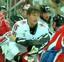 Почему в хоккее разрешены драки. Что говорят о драке правила. Бостон vs. Фанаты «Рейнджерс»