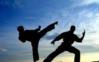Можно ли православному заниматься дзюдо. Заниматься ли православным детям боевыми искусствами? Железное правило: не во вред