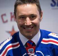Сколько получают хоккеисты. Тяжеловесы-миллионеры: Ковальчук, Радулов, Мозякин. Сколько получают хоккеисты в ВХЛ