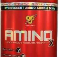 Чем отличаются аминокислоты от протеина. Что лучше протеин или аминокислоты