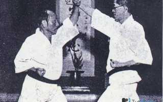 Что сильнее карате или таэквондо. Карате, бокс или тхэквондо: что лучше, сравниваем дисциплины