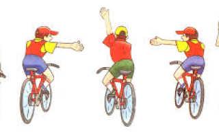 Основные положения что запрещено водителю велосипеда. В. Во всех перечисленных случаях. Техническое состояние велосипеда